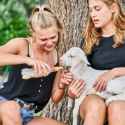 2 girls feeding little lamb