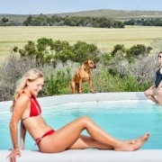 Pool with 2 People and 1 dog, Western Cape Accommodation