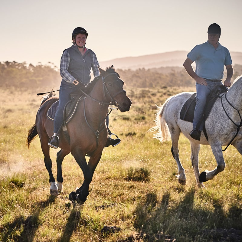 Horseriding holidays capetown western cape