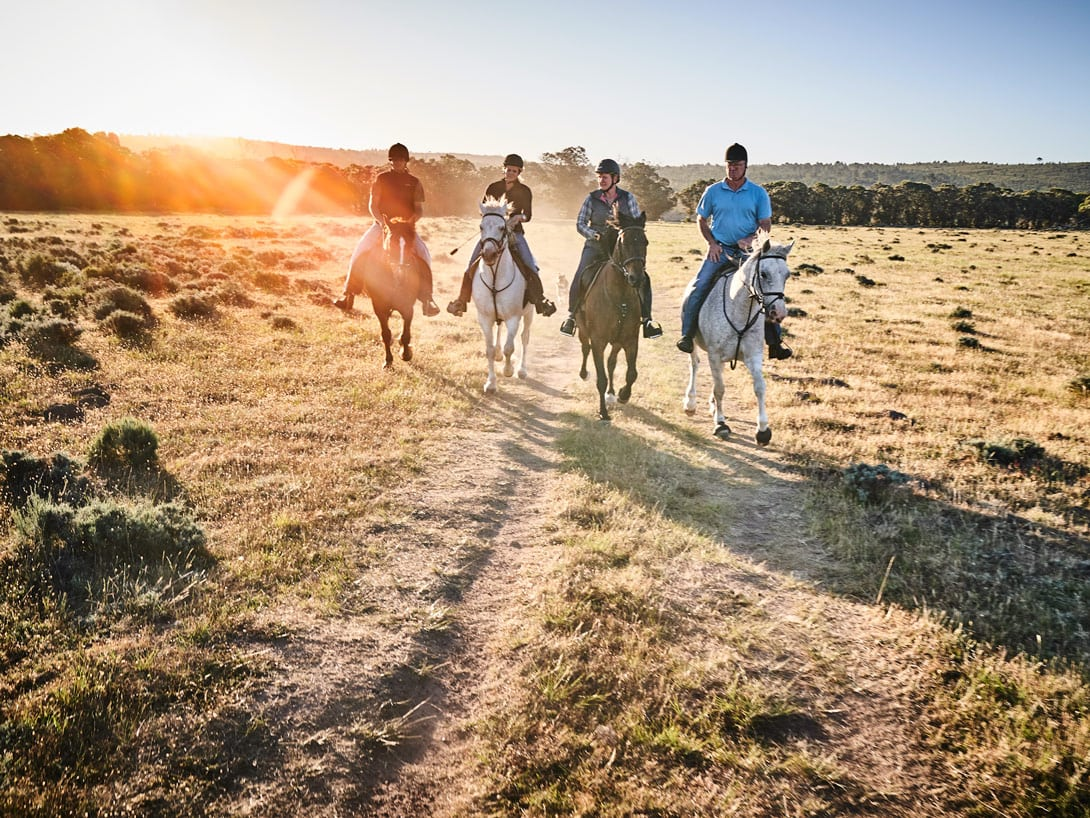 4 people are horse riding through nature